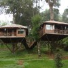 Kerala Treehouse Holidays